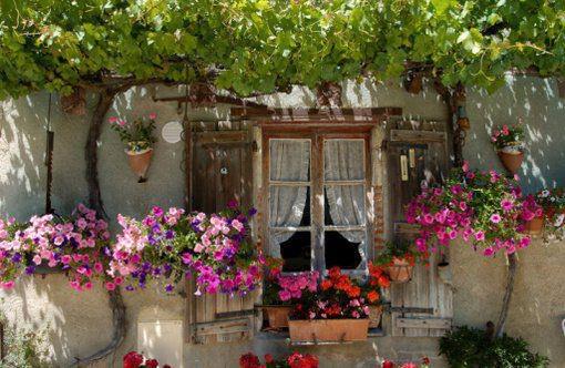 ideias pra jardim criativo reciclavel sustentabilidade labcriativo (5)
