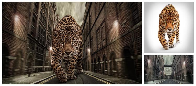 photo manipulation manipulacao de fotos photoshop cinema 4d by Allan Portilho Designer (12)