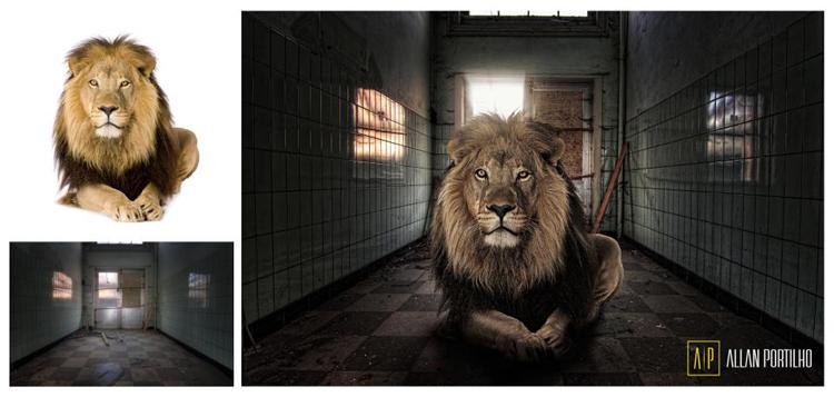 photo manipulation manipulacao de fotos photoshop cinema 4d by Allan Portilho Designer (17)