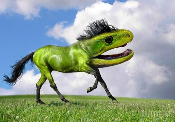 cruzamento de cavalo com iguana