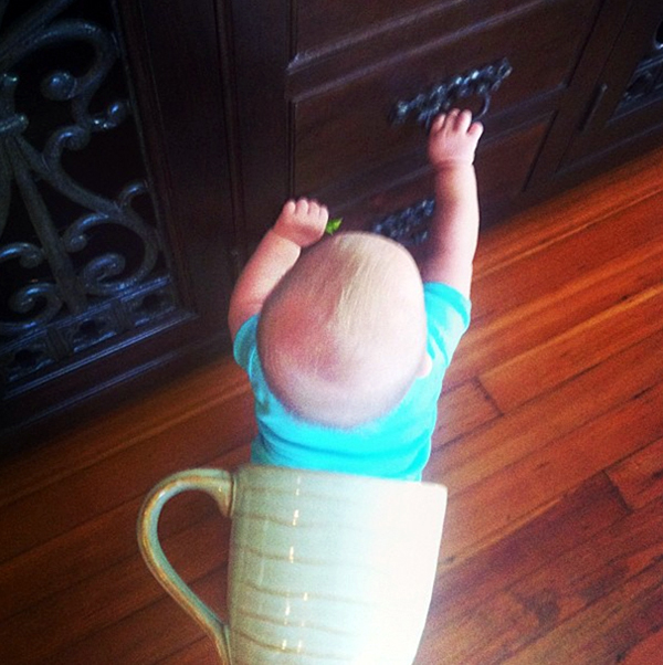 Foto de Bebes em Caneca #babyinamug (22)