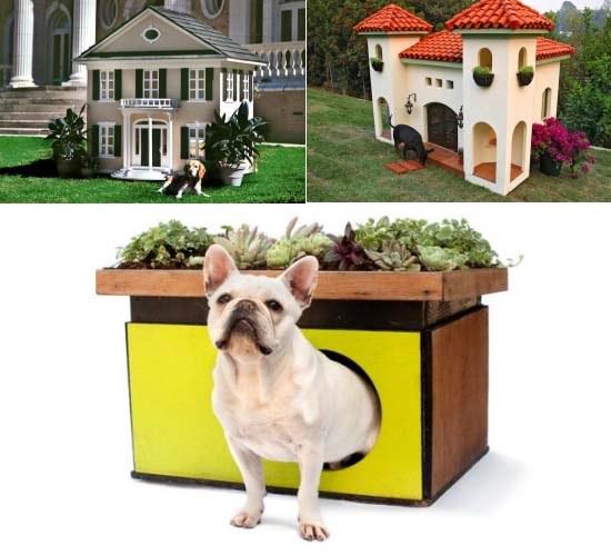 Modelos de casinhas para cachorros, super criativos (1)