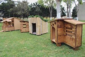 Modelos de casinhas para cachorros, super criativos (13)