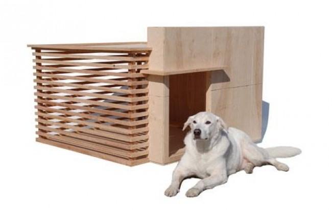 Modelos de casinhas para cachorros, super criativos (14)