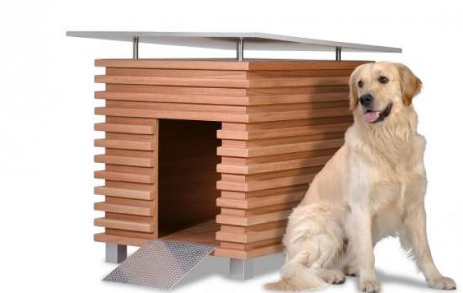 Modelos de casinhas para cachorros, super criativos (15)