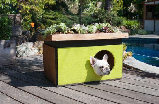 Modelos de casinhas para cachorros, super criativos (3)