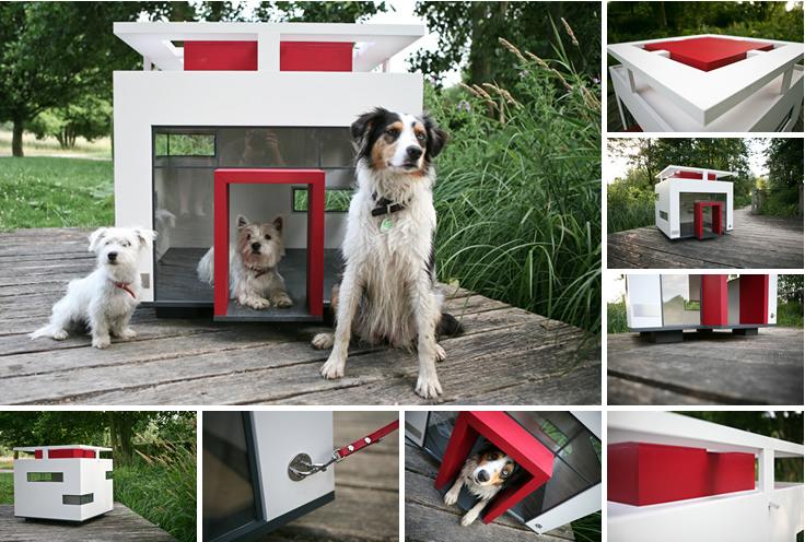 Modelos de casinhas para cachorros, super criativos
