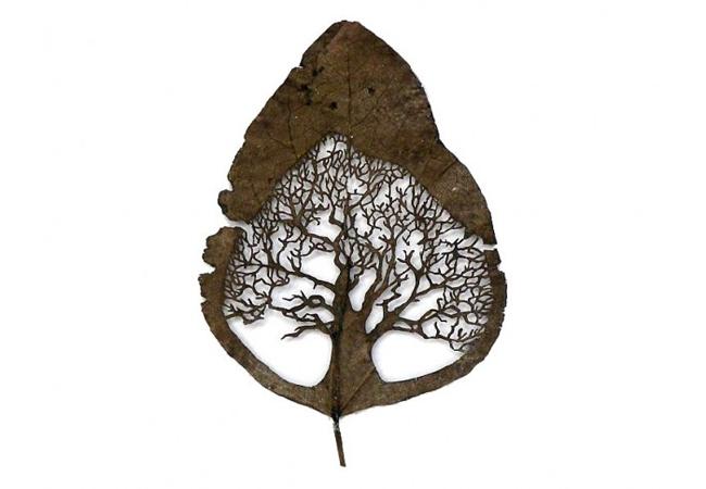 Lorenzo Duran e sua arte nas folhas