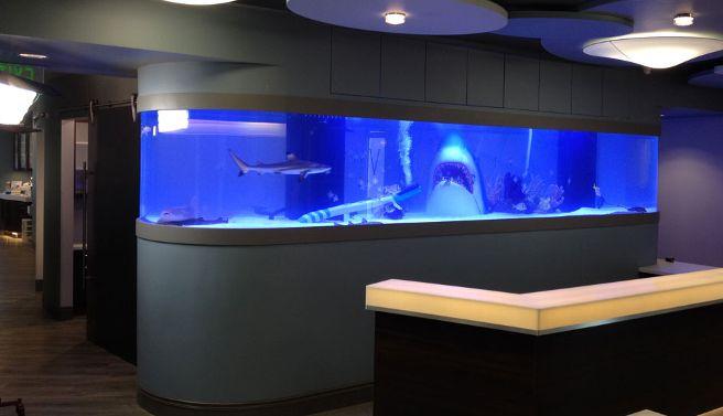 Aquário para uma clinica de dentista, muito legal o detalhe dos dentes fortes do tubarão