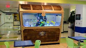 Incrível esse aquário dentro de um baú
