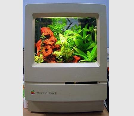Monitor aquário