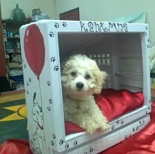 Casinha do cachorrinho com ex monitor