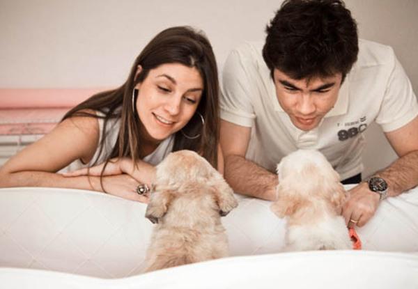 Os cachorros também participam  Hora de contar para os outros integrantes que a família vai crescer...  Foto: Nanda Ferreira.