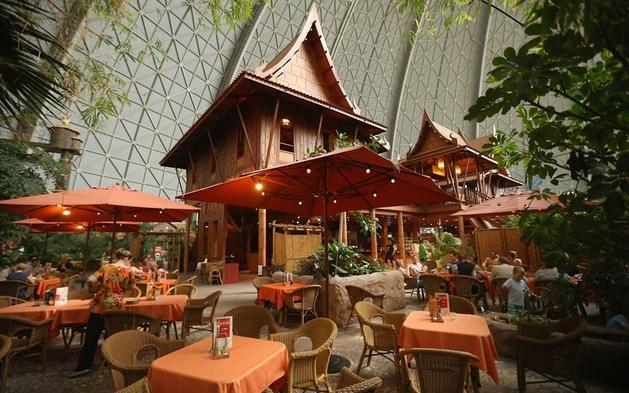 Tropical Islands - Restaurante  Tailandês