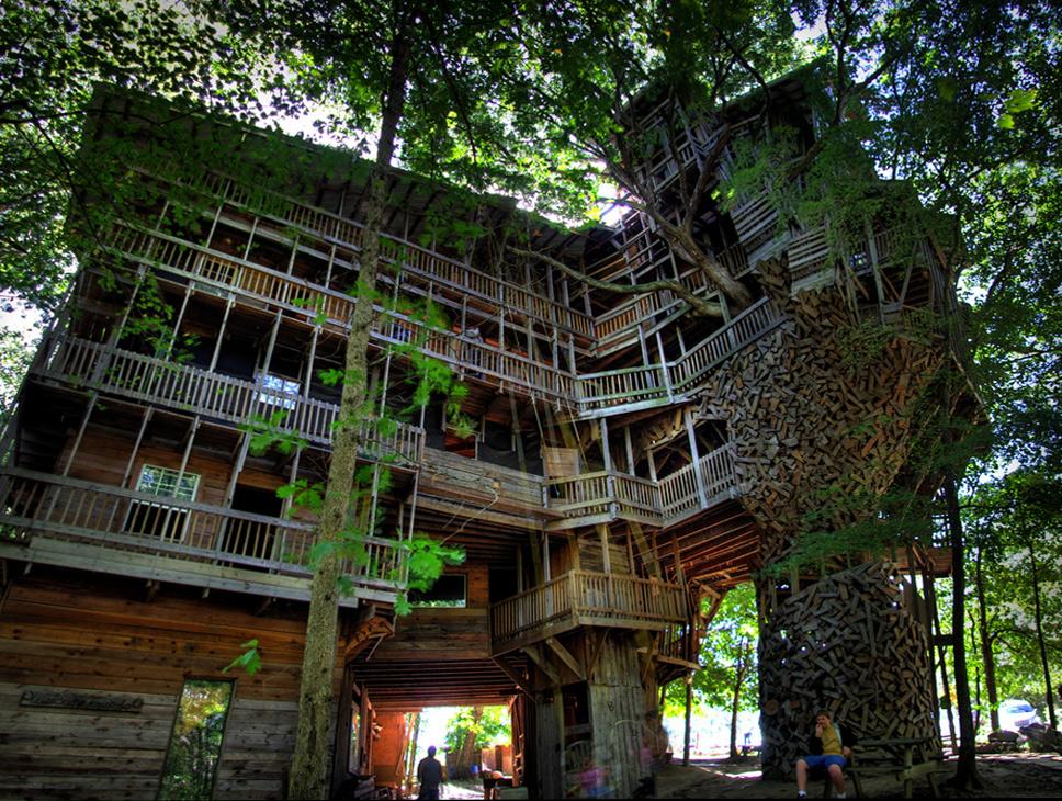 A Maior Casa na Árvore