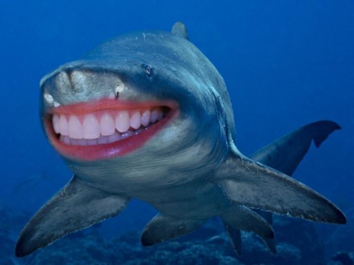 Dentes brancos e lábios carnudos