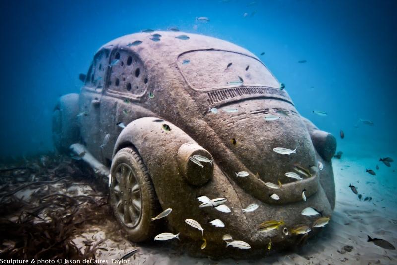 As esculturas mudam com o tempo já que corais crescem ao redor