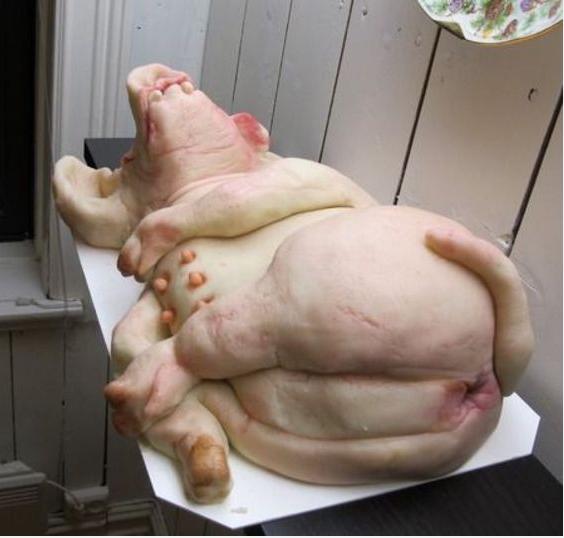 Bolo em forma de um Porco