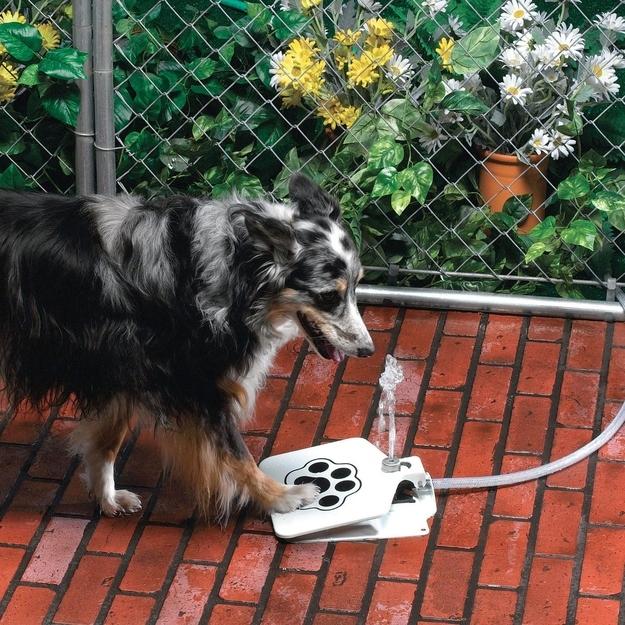 Prático e sem desperdício de água