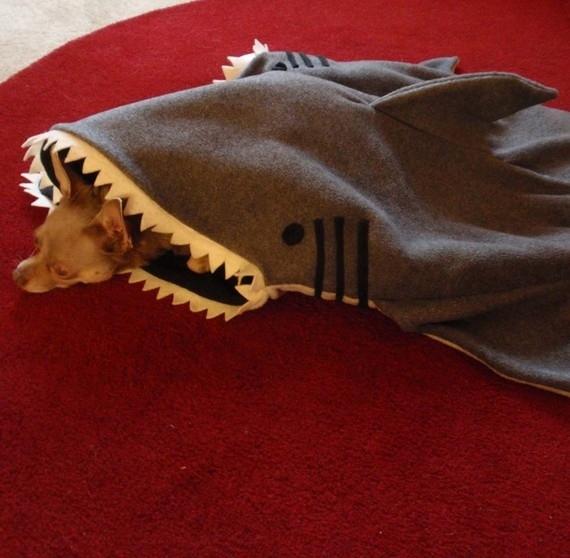 Cama de tubarão para deixar seu cachorro aquecido em ambientes muito frios