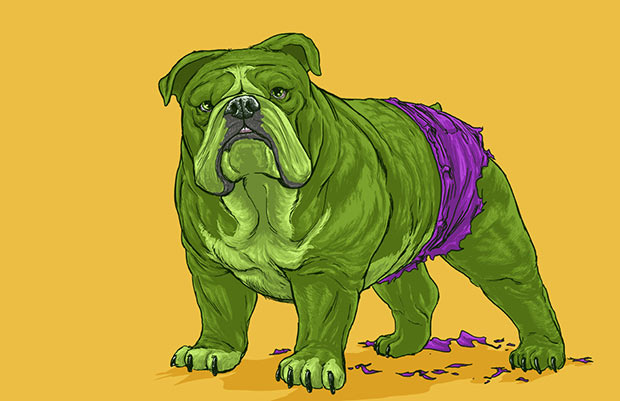 Personagens da Mavel na versão Cachorro